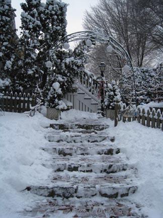 My back steps