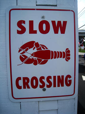 Slowcrossing