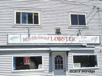Marblehead_lobster_2