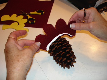 Place_in_pine_cone_2