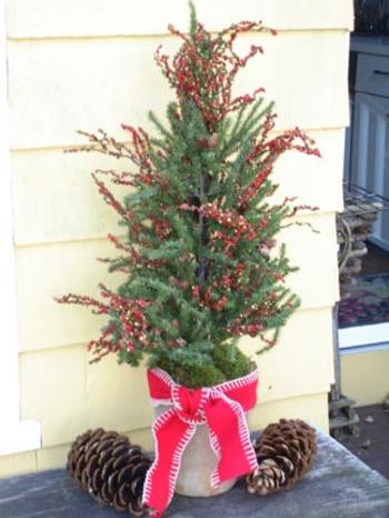 Deck_christmas_tree
