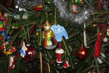 Ornaments_in_tree