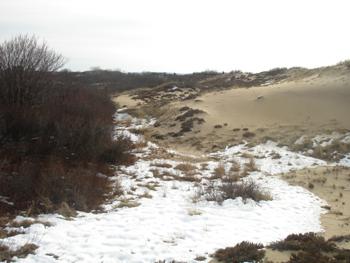 Snow_on_dunes