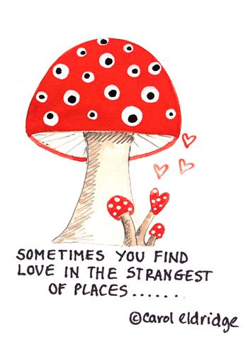 Mushroom_love