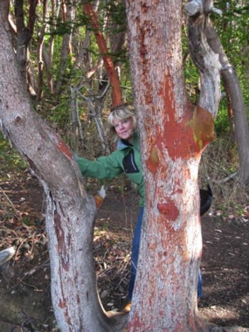 Me_with_the_arbutus_tree